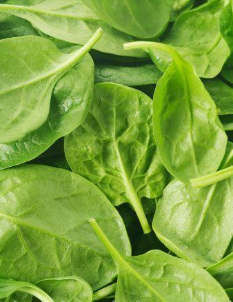 Как выбрать овощи - шпинат фото